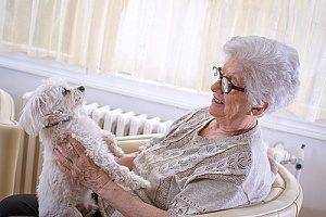 a woman playing with her dog that she plans to include in an estate plan that she will create with the help of trusts and estates attorneys